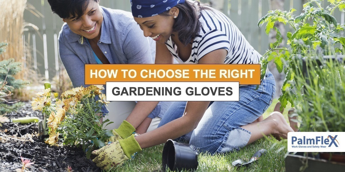 Learn about the best gardening gloves for the job