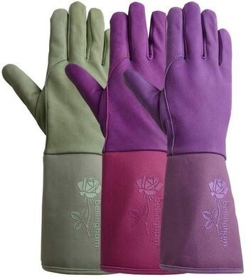 Bellingham C7353AC Tuscany Premium Gauntlet Rose Women Gloves