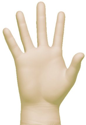 Clean Safety GSF210X Yellow Vinyl Powder Free Gloves